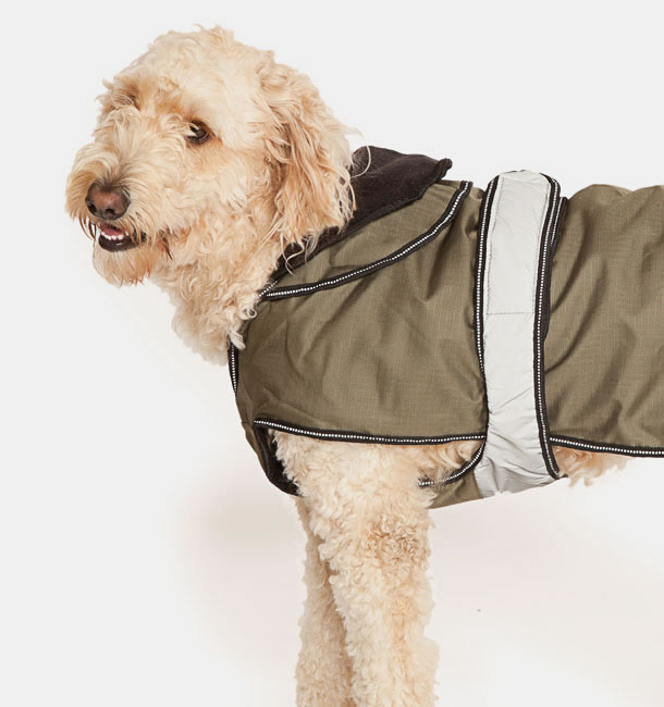 Ultimate 2 in 1 Dog Coat