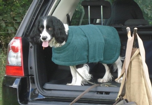 Gundog Towelling Coat